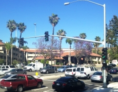 Traffic Signal and ADA Improvements at Temple Avenue & Shilo Inn Dwy.